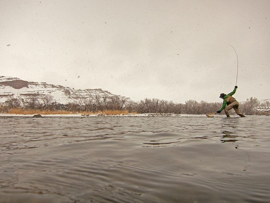 An angler lands a rainbow trout during a snowstorm on the North Platte River near Alcova, Wyoming. Photo Mark Lewis.