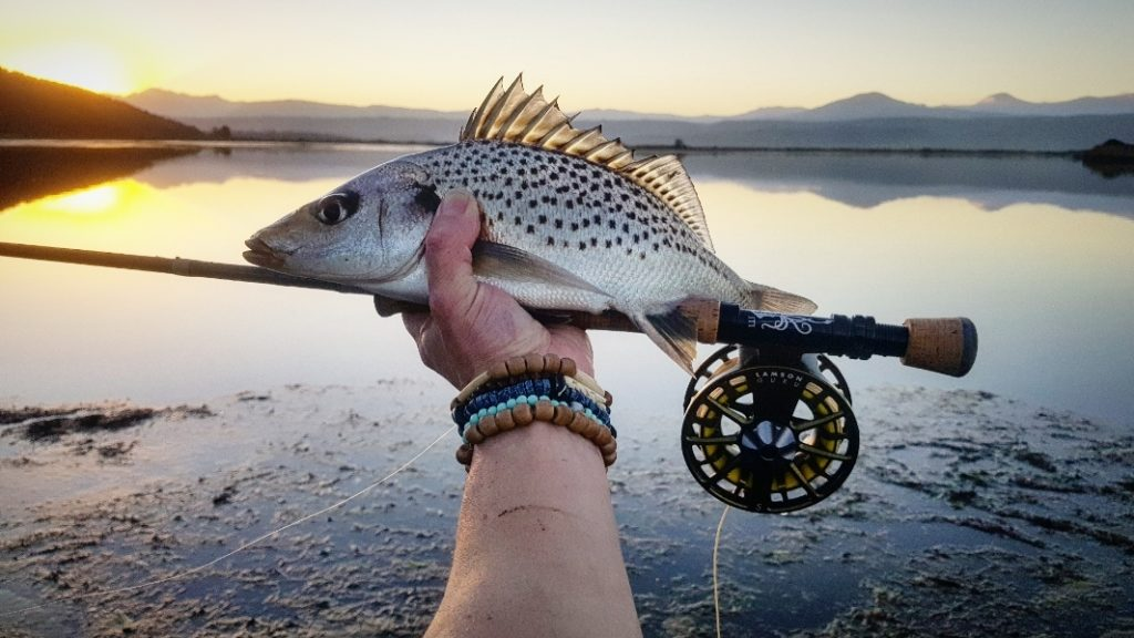 The Echo Prime 8-weight with a Garden Route grunter
