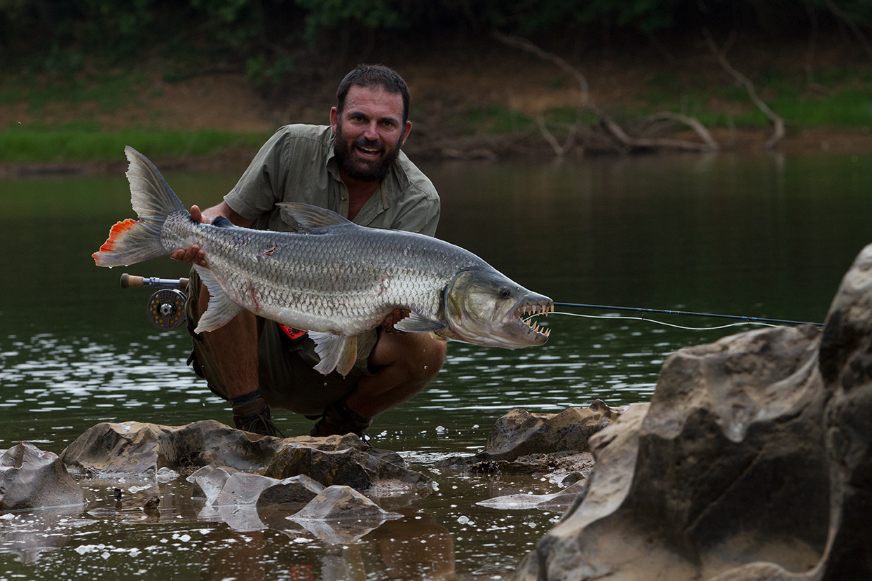 Ed Ghaui with a Goliath tigerfish caught at Chinko in the Central African Republic