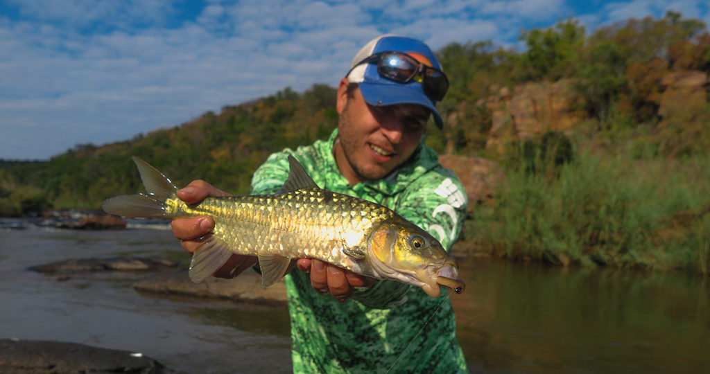 Justin Rollinson with a smallscale yellowfish caught at Tintswalo Lapalala