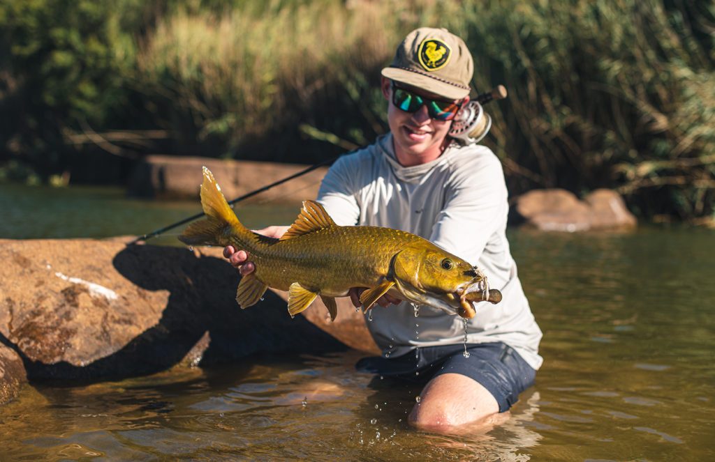 Tim Leppan with a Clanwilliam yellowfish caught in the Cederberg